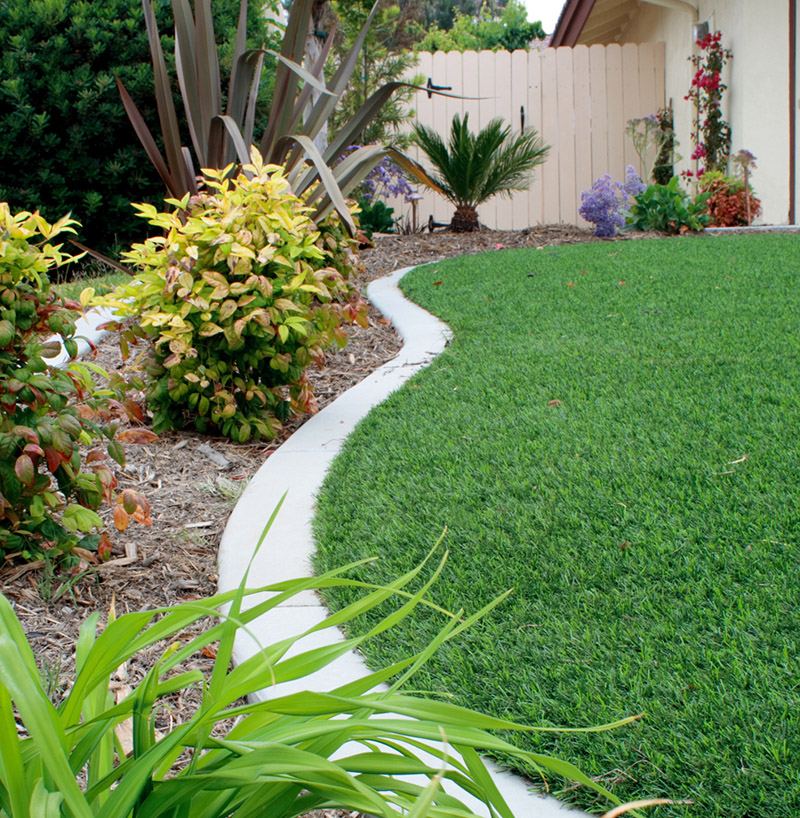 """Fake lawn at side of house.  Yes, this is the easiest lawn I've ever had to NOT maintain."""